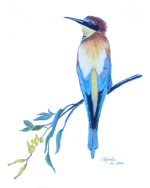 Bee Eater, © 2007 Jess Knowles